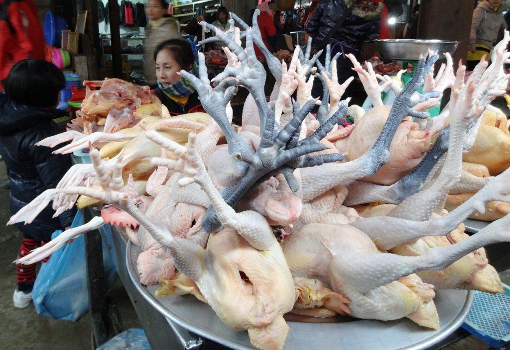 Chickens on Display at Sapa Market
