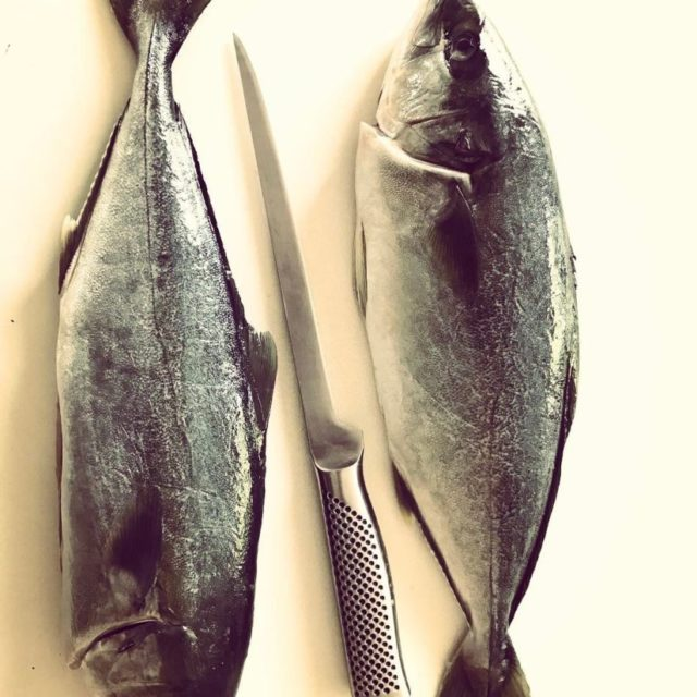 Fantastic Kingfish waiting to be prepped and devoured? Ceviche orhellip